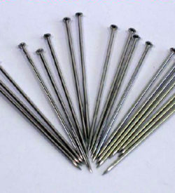 Dissecting/Optical Pins 50mm Pk/100